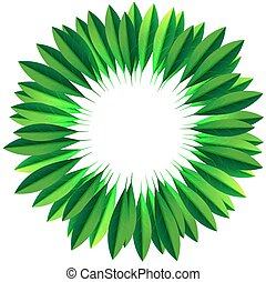 Circle frame made of fresh green leaves