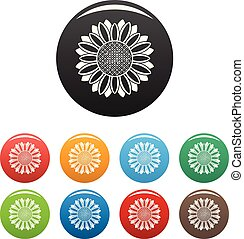 Circle of sunflower icons set color vector