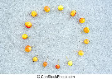 Circle of wild cherry apples on concrete background