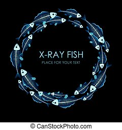 Circle of X-ray fish