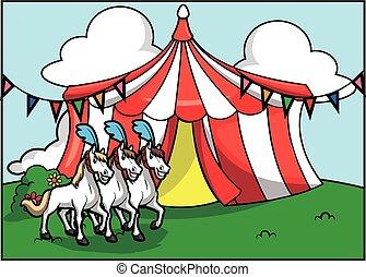 circo, atracción, caballo, blanco