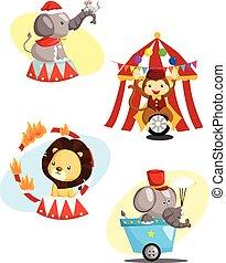 circo, carnaval, animal, vetorial, jogo
