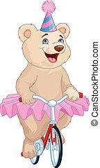 circo, orso