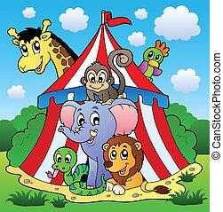 circo, tema, quadro, 1