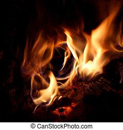 Circular Fire in hollow log