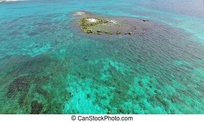 Circular flight over the edge of the shore on a tropical...