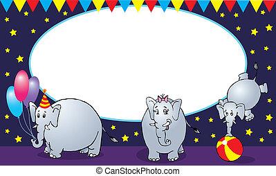 Circus elephant family