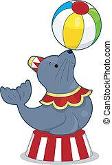 circus, zeehondje, met, bal
