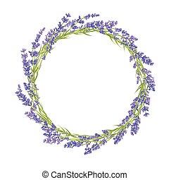 cirkel, bloemen, lavendel