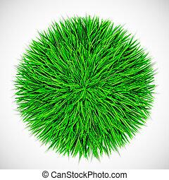 cirkel, gras, achtergrond