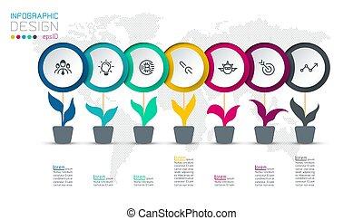 cirkel, infographic, steps., 7, etiket