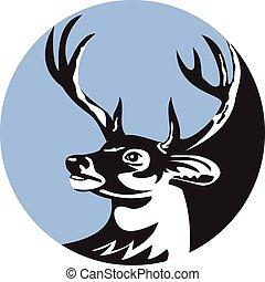 cirkel, whitetail, retro, hjort, bock, huvud