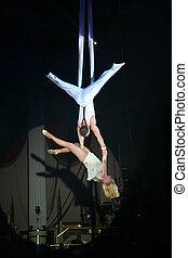 cirque, artistes