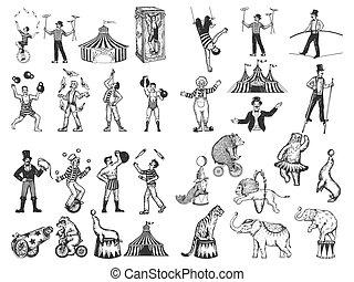 cirque, illustration., vecteur, humain, vieux style, vendange, main, dessiné, gravure, animaux, ensemble, retro, imitation., dessins, croquis, performance