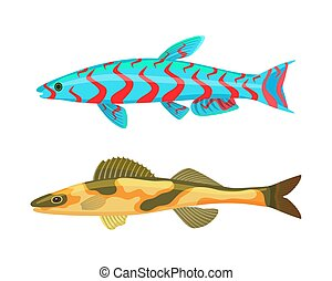 Cirrhitops Fasciatus Fish Set Vector Illustration