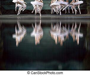 cisne, bailarines ballet, lago