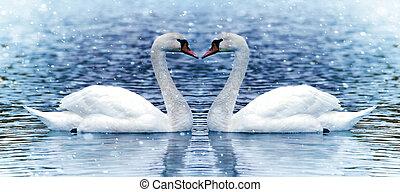 cisne, dois, nevada, sob