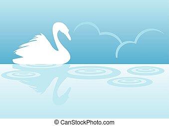 cisne, silueta, lago