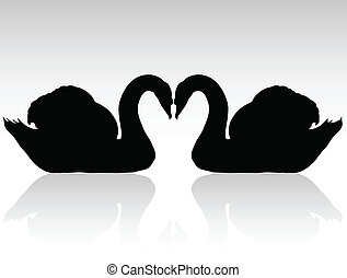 cisnes, siluetas, vector, negro, dos