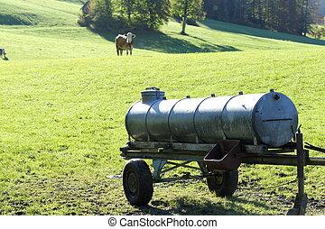 cisterna, kráva, namočit