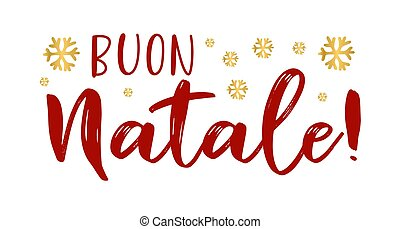 cita, celebración, letras, translated, o, invitation., ...
