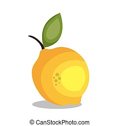 citroen, fruit, ontwerp, pictogram