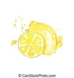 citroen, rijp, sappig, illustratie, hand, watercolor, fruit,...