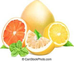 citrom- és narancsfélék, friss, zöld, gyümölcs