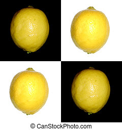 citron, damspel