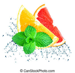 citronträd, plaska, vatten