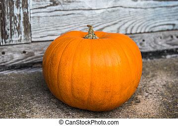 citrouille, devant, halloween, étapes, maison