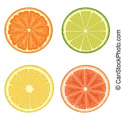 citrus, blanc, ensemble, isolé