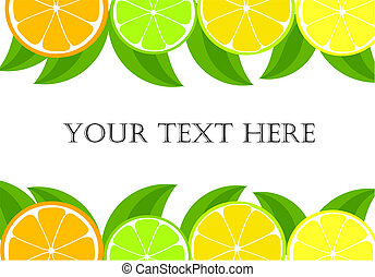 Citrus frame - orange, lemon, lime slices and leaves. Vector...