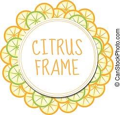 Citrus frame with orange and lime. Summer frame, label fruit