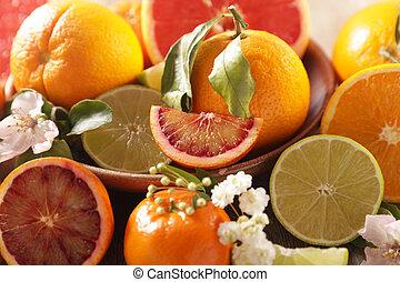 citrus fruit assortment, grapefruit, orange, lemon