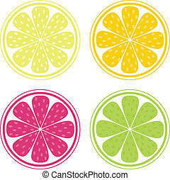 Citrus texture background with slices of lemon, lime, grapefruit and orange isolated on white. Vector stylized background.