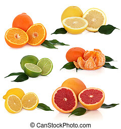 Citrus fruit collection of lemon, lime, orange, tangerine and grapefruit with leaf sprigs, isolated over white background.