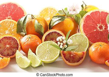 citrus fruit collection- lemon,orange, grapefruit