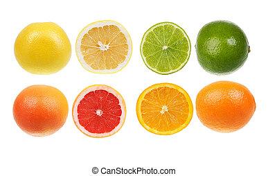 Citrus fruit collection. Orange, lemon, lime, grapefruit