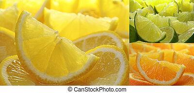 Citrus fruit collection