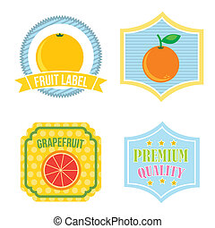 citrus fruit label over white background. vector ...