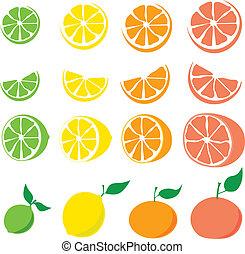 Lime, lemon, orange, grapefruit - sliced and whole