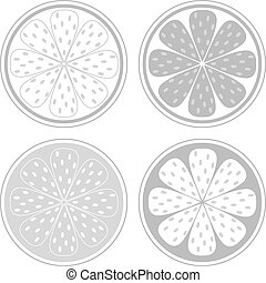Stylized vector citrus slices isolated on white background. Black and white design elements. Give them your own color!