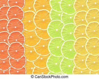 Slices of citrus fruit isolated against a white backgound