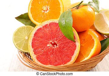 citrus fruit(grapefruit, orange, lemon)