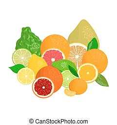 Juicy citrus fruits realistic with slices and leaves. Bergamot, lemon, grapefruit, lime, mandarin, pomelo, blood orange. For cosmetics, fresh bar, store, bio products For design tag label menu