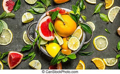Citrus fruits - grapefruit, orange, tangerine, lemon, lime in a cup.