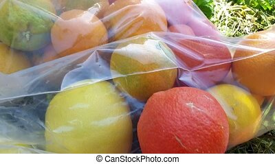 Citrus fruits in plastic bags shot clip