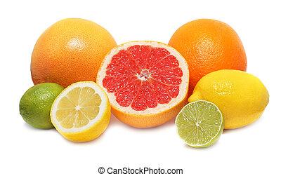 Citrus fruits (lemon, lime, orange and grapefruit) isolated on white background with shadows