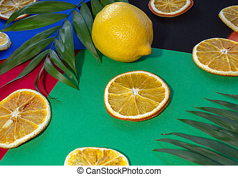 citrus fruits on colorful background